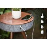 Blueman BT-Z1 Bluetooth Table Speaker, Battery
