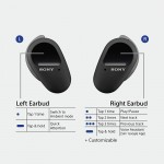 Sony WF-SP800N Truly Wireless In-Ear Noise Canceling Headphones with Mic For Phone Call And Alexa Voice Control